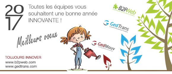 bonne_annee 2017_web